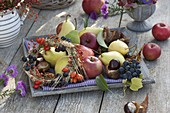 Bowl with apples, pears, grapes, Aesculus