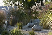 Gravel garden bordered with grasses with limestones