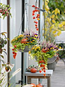 Autumnally planted metal scale as a hanging basket