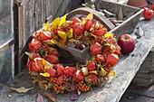 Wreath made of physalis (lantern flower), pyracantha (firethorn)