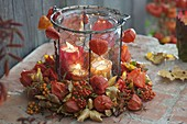 Wreath of autumn leaves, physalis, pyracantha
