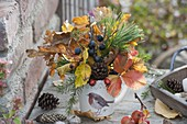 Autumnal forest bouquet with branches of Fagus, Quercus