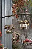 Lanterns decorated with hazelnuts, Rose