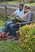 Man and woman on bench tasting home-grown tomato