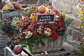 Basket Box Tucked with Fruits and Berries as Bird Food Box