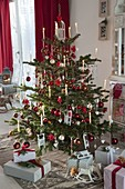 Abies nordmanniana (Nordmann fir) decorated red-white