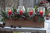 Advent box with Gaultheria procumbens