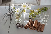 Christmas roses - cinnamon sticks - arrangement