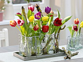 Colorful tulipa (tulip) in small bottles in mesh basket