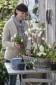Woman planting basket with white spring bloomers