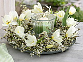 Wreath of white tulipa flower and Prunus spinosa branches