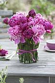 Paeonia (Pfingstrosen) in Vase verkleidet mit Hordeum (Gerste)