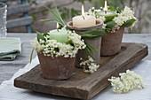 Candle wreaths made Sambucus nigra (elderberry) flowers