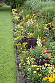 Flowerbed with a sharp, straight edge