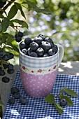 Blueberries (Vaccinium) in cup