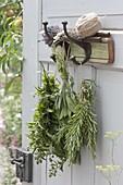 Hanging herbs to dry, rosemary (rosmarinus), sage