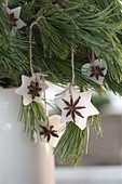 Self made Christmas tree decorations from wax and star anise