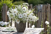 White bouquet in a rustic vase, Cosmos (jewelry basket)