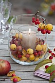 Glass in glass as lantern with malus (ornamental apple)