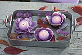 Deteriorated baking dish with floating candles on ornamental cabbage