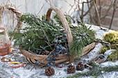 Korb mit Zweigen für Winter-Floristik