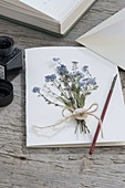 Greeting card frame with pressed forget-me-not