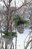 Pine cones filled with birdseed