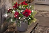 Lit Christmas Bouquet with Euphorbia pulcherrima