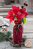 Homemade gift bottle as a Vase with red knitting panel
