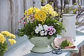 Edible spring flowers in enameled colander