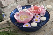 Blue bowl with floating candles and flowers of Paeonia lactiflora