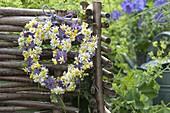 Kränzchen in Herzform aus Kamille (Matricaria chamomilla) und Blüten