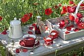 Papaver rhoeas (Klatschmohn) wird in der Volksheilkunde traditionell für Tee