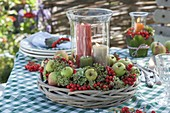 Late summer table decoration with rowan berries