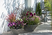 Late summer planted bowls at the entrance