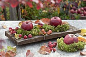 Apples and ornamental apples, small moss wreaths and colorful leaves