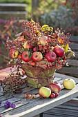 Autumn arrangement of apples (malus), pink (rosehip) and rubus