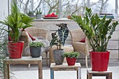 Green plants as a room divider on side tables