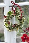 Wreath of Ilex aquifolium 'Argenteomarginata'