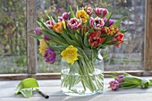 Bouquet with blooming Tulipa (tulip) in a wide glass vase