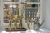 Small bouquets of different colored Cornus branches