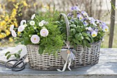 Gift basket with herbs and edible flowers
