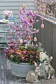Alte Zinkwanne mit Fruehlingsbluehern bepflanzt