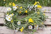 Maiengrün, wreath wound from grasses, Bellis perennis