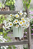 Small bouquet of Leucanthemum vulgare and grasses