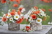 Small bouquets with Papaver rhoeas (poppy), Leucanthemum