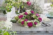 Fragrant pink wreath 'Rose De Resht' (Damascene rose)