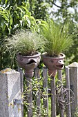 Hand-made ceramics with bird faces on fence, planted with Festuca