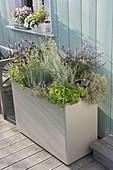 Hoher Kunststoffkasten als Kräutergarten auf der Terrasse