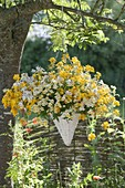 Hanging basket with Nemesia Sunsatia 'Little Banana' 'Little Coco'